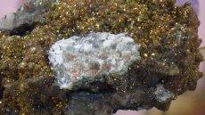 画像5: レインボーキャルコパイライト(黄銅鉱) (5)