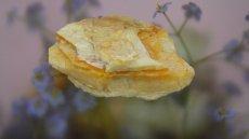 画像5: 蛍光オパール(蛋白石) (5)
