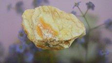 画像6: 蛍光オパール(蛋白石) (6)